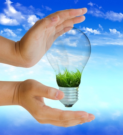 energy saving: bombilla con protección de la naturaleza en día de cielo azul