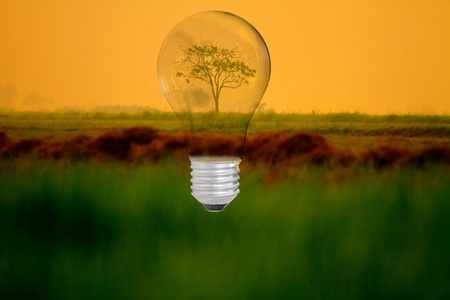 blue sky thinking: light bulb with protect nature idea Stock Photo