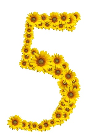 Number 5, Sunflower isolate on White background