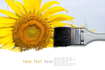 Sunflower painting background for your design photo