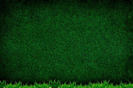 cancha de futbol: Fondo del c�sped de hierba forground, la textura de su dise�o