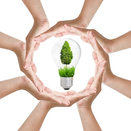 Multiracial woman hands making a circle with Light bulb tree Stock Photo