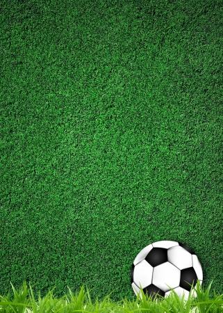 football illustrator on grass texture photo
