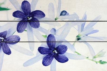 木製白地に花絵