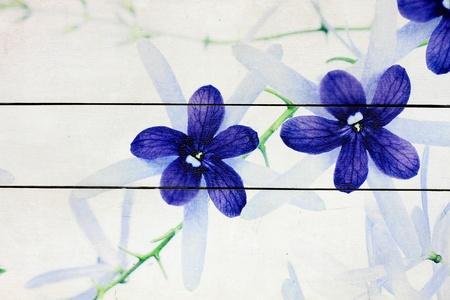 Flower painting on white wood background photo