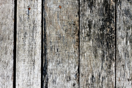 ashtray: Wall wood texture background