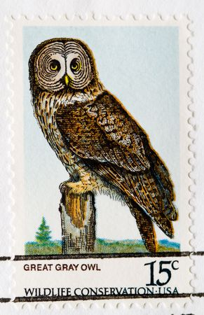 This is a Postage Stamp Great Gray Owl