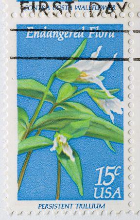 trillium: This is a Postage Stamp Persistent Trillium Endangered Flora Stock Photo