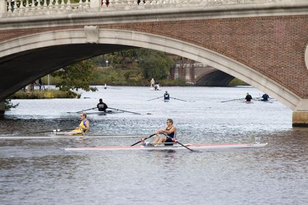 sculling: BOSTON - OCTOBER 18: In the Head of Charles Regatta, On October 18th, 2008 Viorel Stirbu and James Stock race to be first to pass under the Weeks Footbridge. Editorial