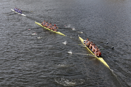 BOSTON - OCTOBER 19, 2014: Sydney (Right), Stanford University Men\'s Crew (Middle), Washington (Top) races in the Head of Charles Regatta Mens Championship Fours
