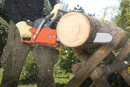 La motosierra cortando el registro de la madera