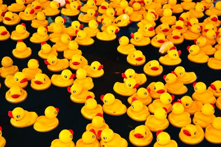 squeak: Many yellow ducks floating in a pool Stock Photo
