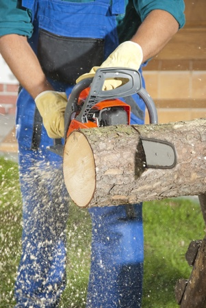 saws: The lumberjack cutting the log of wood