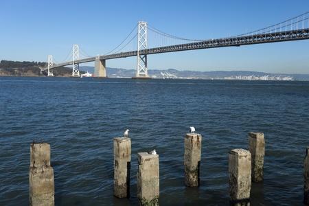 San Francisco Bay bridge w Treasury Island