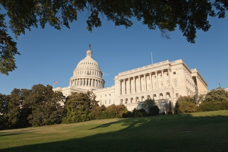 sunshine state: The US Capitol in Washington D.C. Stock Photo