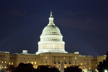 sunshine state: The US Capitol in Washington D C  in the night