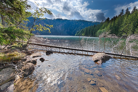 Glacial Black Lake surrounded by the forest in South Bohemia photo