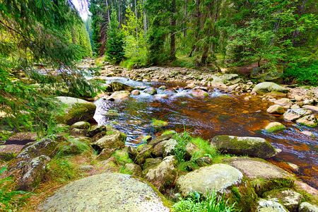 River fast runs over boulders in the primeval forest