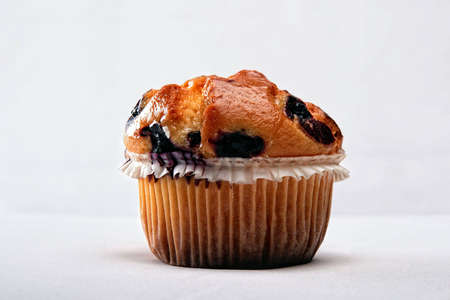 blueberry muffin: Blueberry Muffin in white background, single object, shining top surface Stock Photo