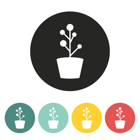floriculture: Flower Icon.vector illustration.