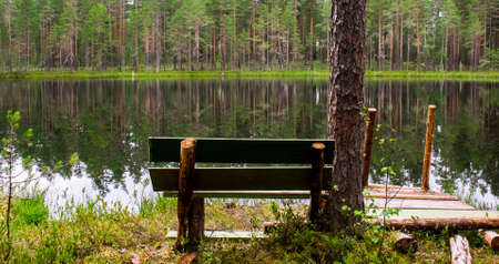 A place to relax with a pier on the shore of a lake in a Pine forest