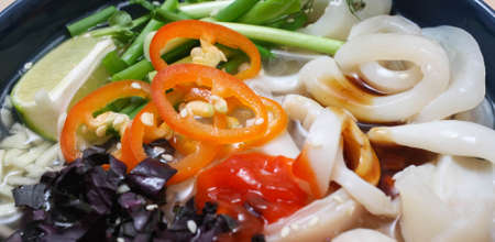 Vietnamese Pho-ca soup with squid and rice noodles