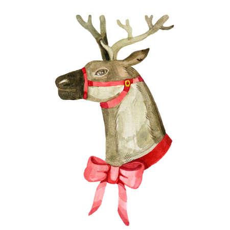 Santas Christmas Reindeer watercolor cute illustration