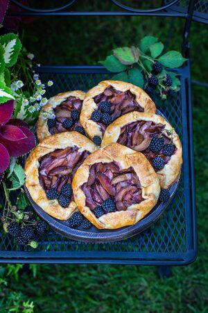 Homemade open shortcake tarts with plums and blackberries, gallets Reklamní fotografie