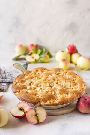 Homemade apple pie, charlotte. On white background