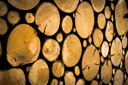 rustic: Rustic and cozy log wall