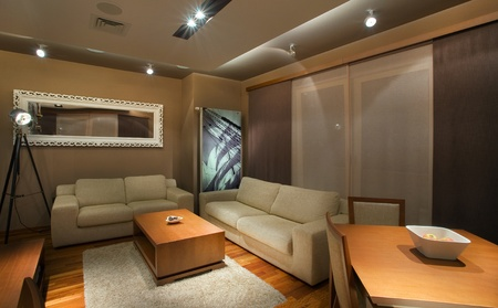 Modern interior of an apartment with handmade furniture and lighting equipment. Stock Photo - 8624776