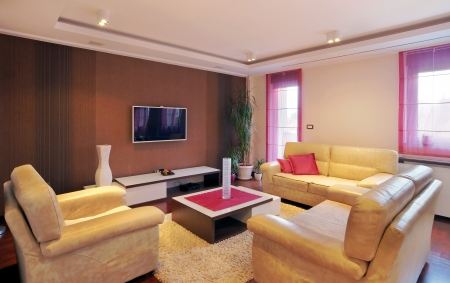 Interior of a modern home with furniture. Фото со стока - 15314564