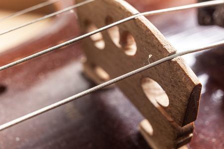 precise: Macro view on violin strings and violin body. Stock Photo