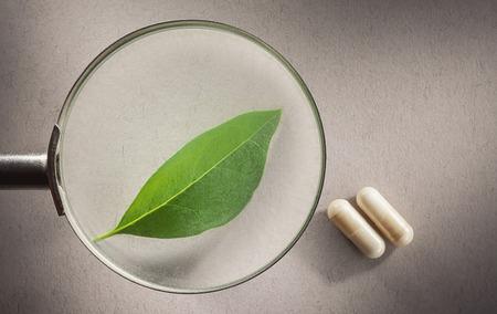 lupa: Conceptual composición presentación relación ciencia medicina entre lo natural y química.
