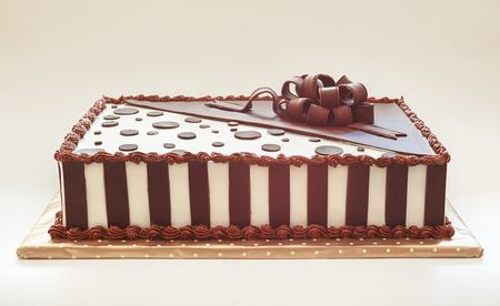 Studio shot on white background of chocolate cake, pretty decoration.