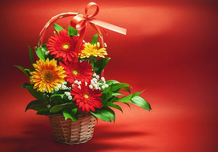 bouquet fleur: Deux couleurs de fleurs Gerber, rouge et jaune, dans le panier douce sur fond rouge.