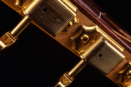 gypsy: Part of a gypsy acoustic guitar, details of golden tuners.