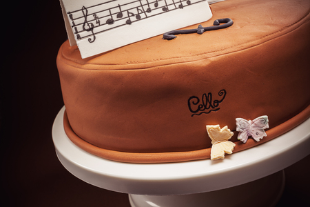 happy life: Birthday cake decorated with fondant, rounded, symbolically presenting piano and cello instruments.