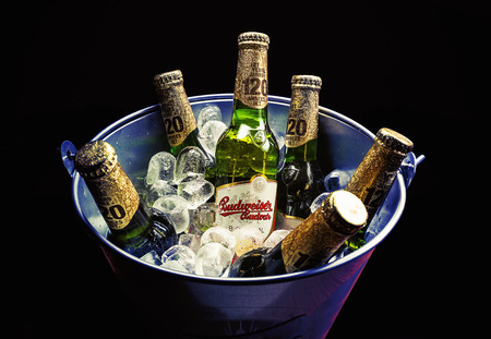 budweiser: Cacak, Serbia - March 30, 2016: Six bottles of Budweiser beer in bucket, served for group of people.