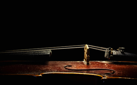 upper half: Details of an old dusty violin on black background, view from aside.