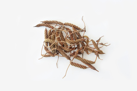 east indian: East Indian screw tree ,Thai herb for health.