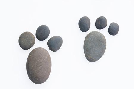 huellas de perro: Huellas de perro.