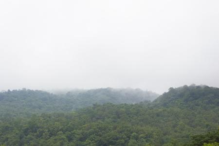 atmosfera: Ambiente ma�ana en la monta�a.