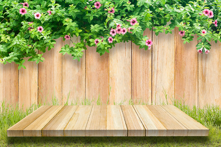 liana: leaves on a wooden wall. green liana on a wooden fence. background. empty space for your text.