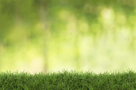 comfortableness: Grass with blur background. exaltation concept. Stock Photo