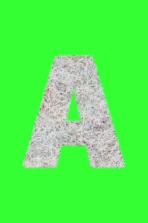 Fonts and Alphabet From Drygrass or Hay Isolate on Green. A.