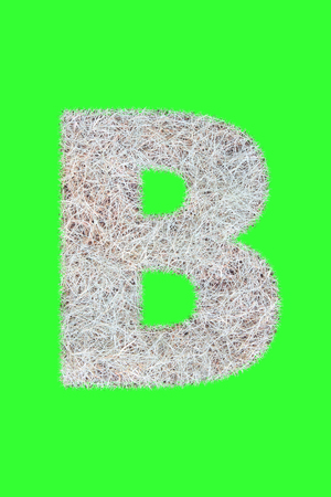 Fonts and Alphabet From Drygrass or Hay Isolate on Green. B. Stock Photo