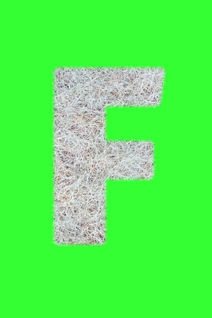 Fonts and Alphabet From Drygrass or Hay Isolate on Green. F. Stock Photo