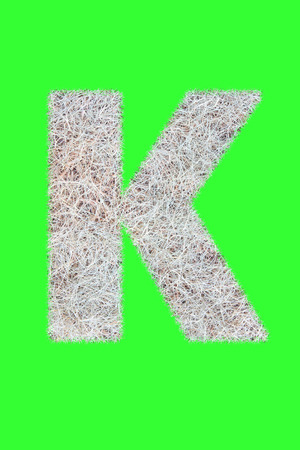 Fonts and Alphabet From Drygrass or Hay Isolate on Green. K.