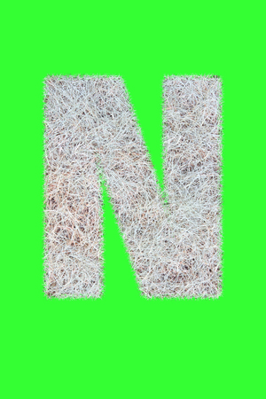 Fonts and Alphabet From Drygrass or Hay Isolate on Green. N.